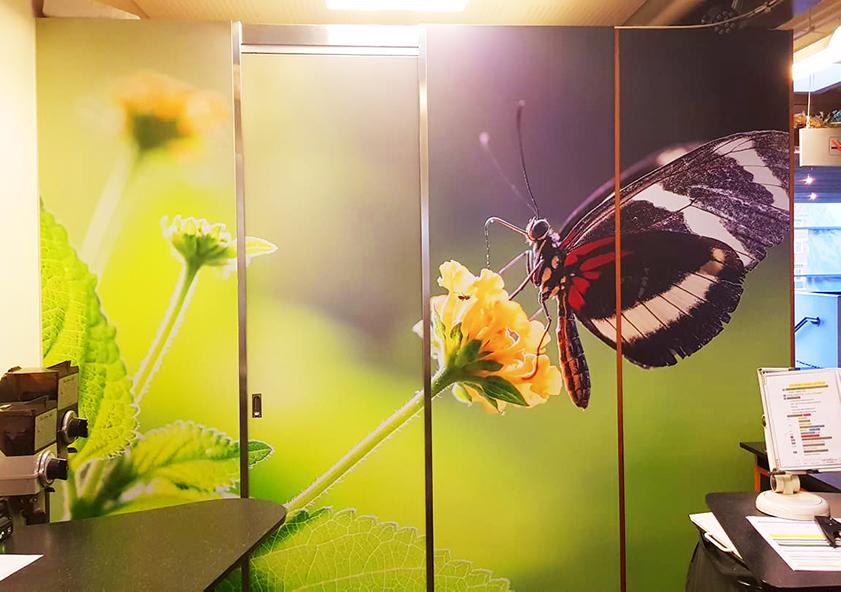 Folieprint med en sommerfugl som sidder på en blomst, til Randers regnskov.